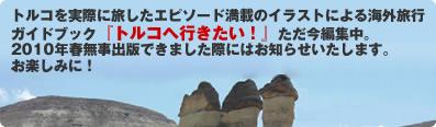 トルコ格安旅行ツアーならおまかせ!2009秋特別企画トルコ周遊ツアー(日本旅行)
